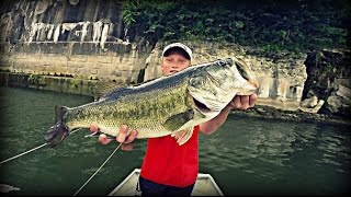 We didn't Think it was THAT BIG | TylersReelFishing