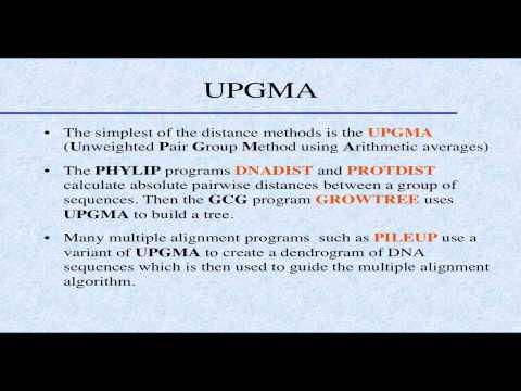 Intro Biostatistics and Bioinformatics #14