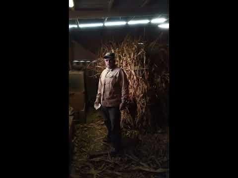 Измельчитель стеблей кукурузы своими руками