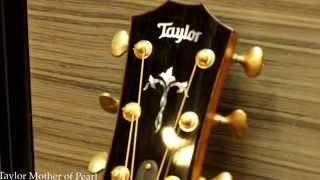 Taylor 918E