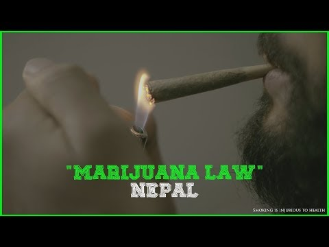 Marijuana Law in Nepal | A Social Awareness Video |