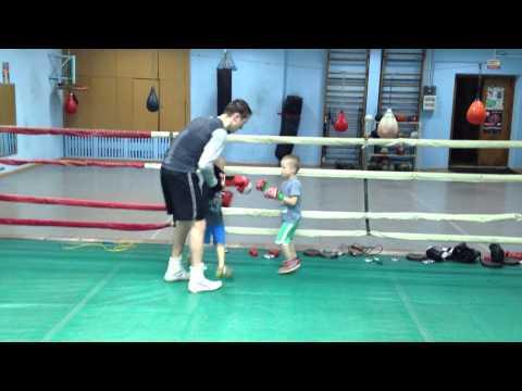 Бокс, кикбоксинг, тайский бокс (муай-тай), карате