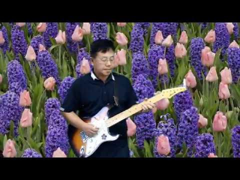 Petite Fleur - Guitar Instrumental