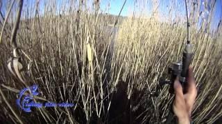 Отчет 13 04 2017 Южное водохранилище