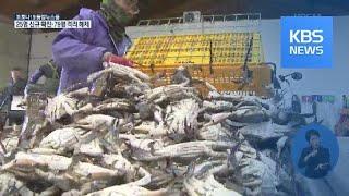 봄 꽃게철인데…어획량은 줄어 / KBS뉴스(News)