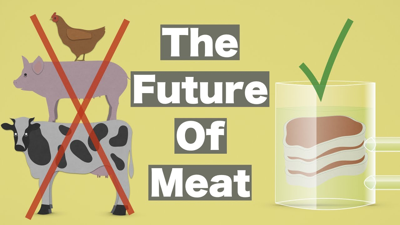 the future of meat youtube