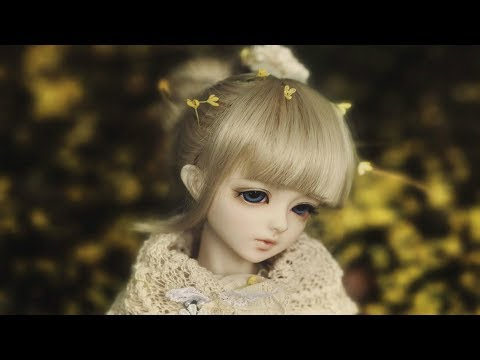 beautiful doll's picture video