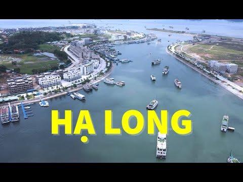 👉 Đâu Cần Đi Xa, Đây Là Bến Du Thuyền Lớn Nhất Việt Nam – Tuan Chau Ha Long Habour by Drone