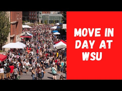 Move In Day At Washington State University