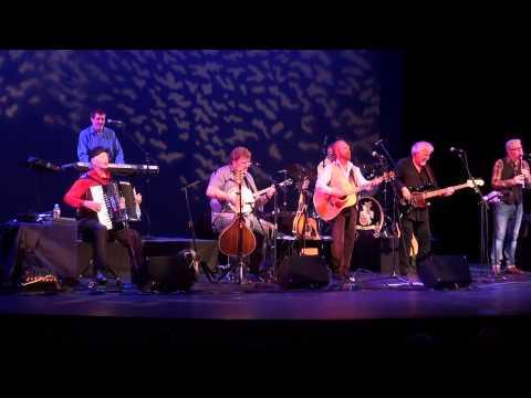 The Irish Rovers - Live