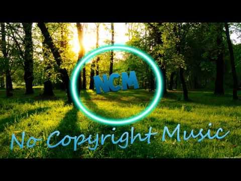 [EDM] - Distrion - Summer Runners | NoCopyrightMusic