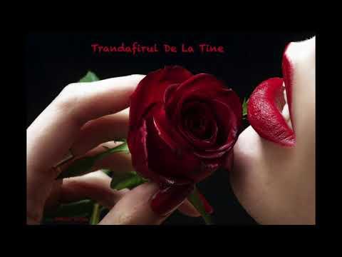 Adrian Sorlea-Trandafirul De La Tine