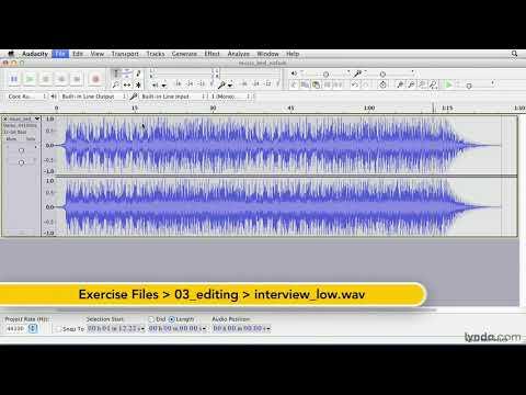 Audacity tutorial: Using common effects | lynda.com