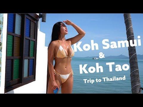 Trip to Koh Samui & Koh Tao 泰國之旅