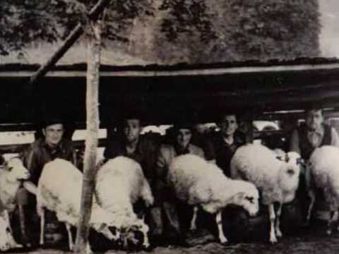 Miorița / Old shepherd ballad