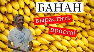 видео 8 способов использования банана.