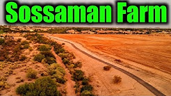 Sossaman Farms - Queen Creek, Arizona/ living in Queen Creek Arizona