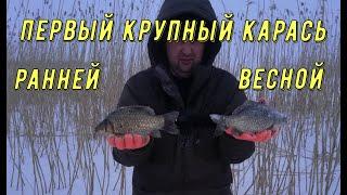 ЛОВЛЯ КАРАСЯ ВЕСНОЙ Ловля карася Как ловить карася зимой Рыбалка на карася Ловля карася весной