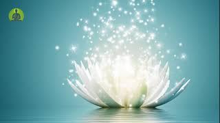 1 Hour Healing Music for The Body & Soul, Positive Energy, Inner Peace Meditation Music