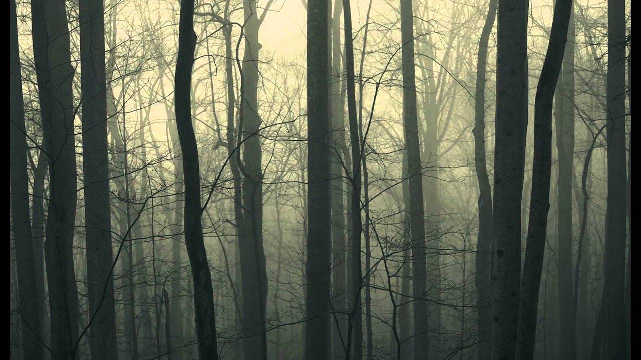 Картинки мрачные природы