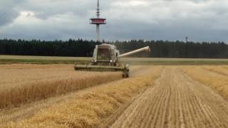 Fortschritt E517 Gerstenernte 2016 in Holtum-Geest/Kirchlinteln