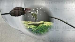 Secret Symphony - Katie Melua
