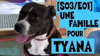 AU COEUR DES REFUGES [S03/E01] - Une famille pour Tyana