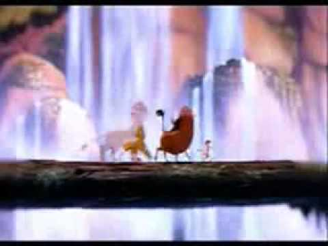 Lion king   Fly Robin Fly