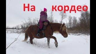 """В поле на кордео. Что такое """"хобби лошадь""""."""