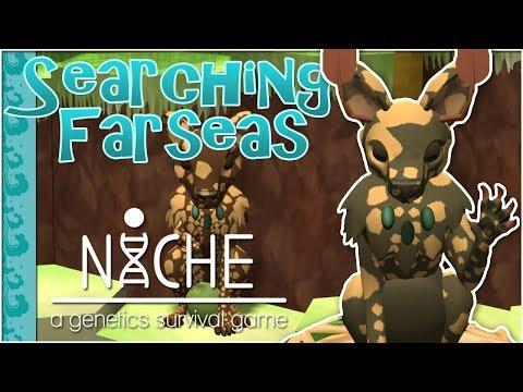 Saga of Cookie & The Coconut Tree 🌿 Niche: Searching the Farseas • #6