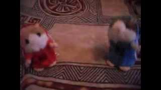 Танцующие хомячки