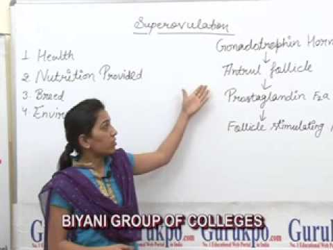 SuperovulationBSc (Zoology) Lecture by Ms. Priya Rathore