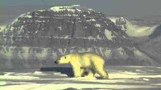 Polart klima rigtig