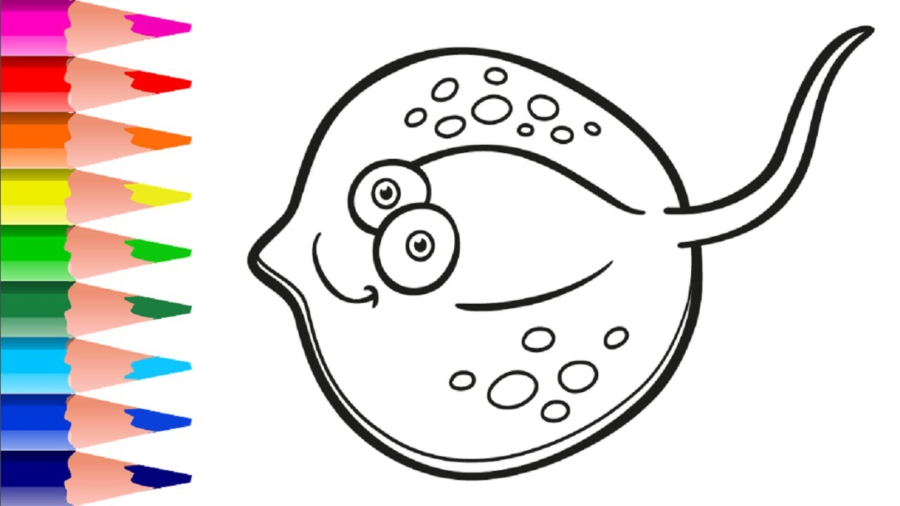 Balik Denizanasi Istakoz Kaplumbaga Gibi Deniz Canlilari Nasil