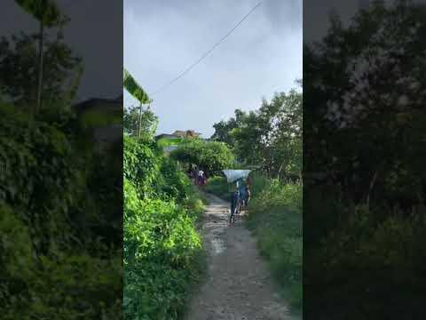 Video de San Miguel del Padrón