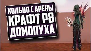 КРАФТ - ДОМОПУХИ | КОЛЬЦА С АРЕНЫ | Р8 ШМОТ | PERFECT WORLD