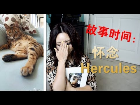 [MsLindaY]故事时间-怀念Hercules Storytime-Remembering Hercules