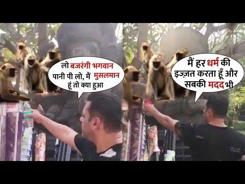 Salman Khan Heart Touching Moments With Thirsty Monkey   He Feeds Monkey aka Bajrangi Mp3