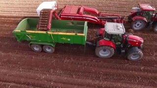 A Local Pembrokeshire Potato Farm