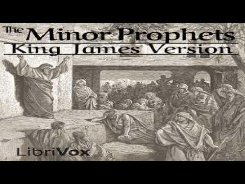bible-(kjv)-28-39:-minor-prophets-(hosea-through-malachi)-|-king-james-version-(kjv)-|-book-|-2/2