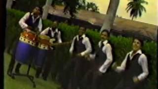 BANDA BLANCA -PALO BONITO