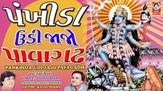 પંખીડા ઉડીજાજો પાવાગઢ વીડિયો pankhida udi jajo pavagadh