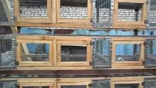Клетка для кроликов на 30 отделений