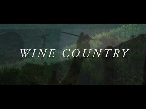 Wine Country: Impressions in Oil a New Coffee Table Book by Erin Hanson [Version 2]