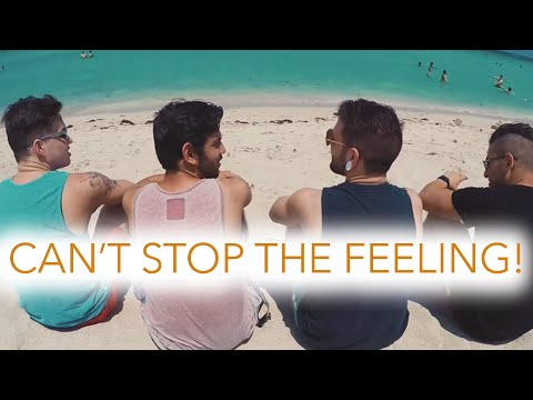 Can&39;t Stop The Feeling - Justin Timberlake Fame On Fire Rock Cover  Punk Goes Pop