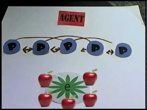 Agency Theory and Governance - introduction to terms