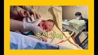 [vlog] 출산 브이로그ㅣ임신39주2일ㅣ유도분만ㅣ2박…