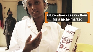 Kenya: Gluten free cassava flour for a niche market