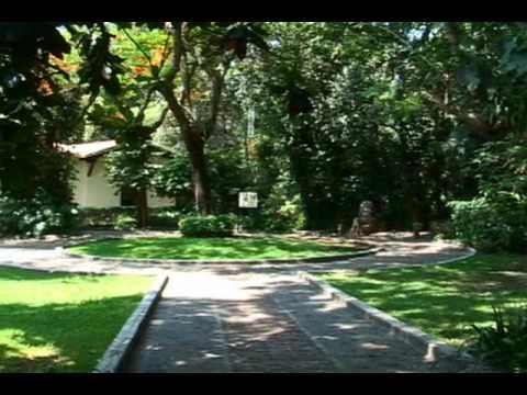 Jard n etnobot nico youtube for Jardin youtube