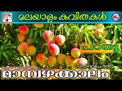 What are some really cute Malayalam words (with their ...